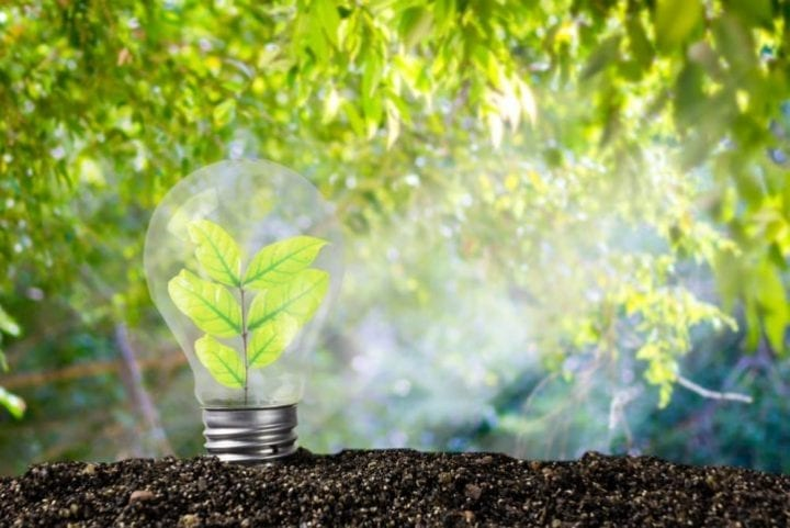 edf offre renouvelable