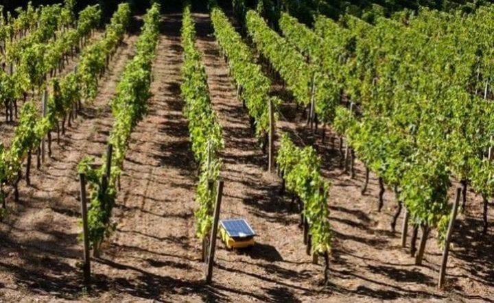 La France a de l'énergie #2: Les robots solaires prennent soin des panneaux solaires