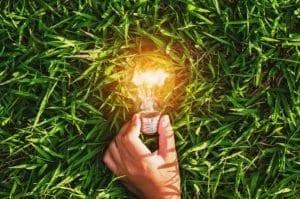 électricité fournisseur edf