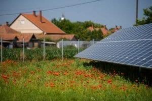 raccordement producteur électricité