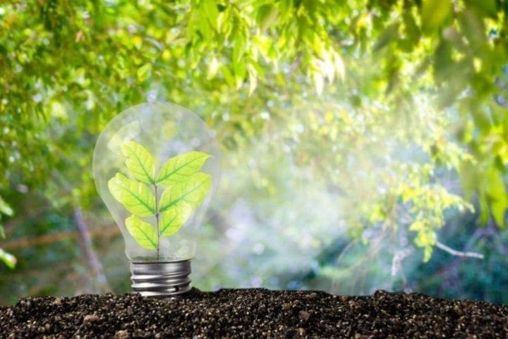 Les offres de marché : EDF se met au vert