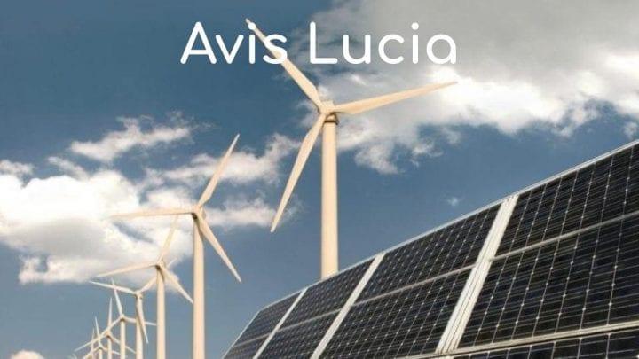 Avis Lucia