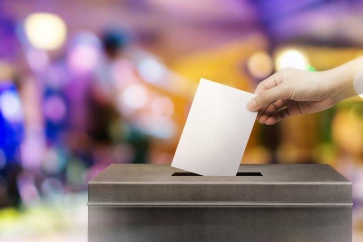Élections municipales 2020 EELV vague verte